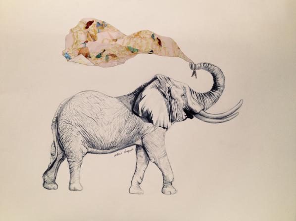 elephant - scarf - hermès - illustration - animal - marie chapuis