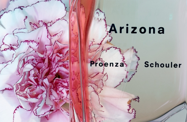 4elements_mariedebrechapuis_fabricebouquet_cestlavie_arizona_proenza3