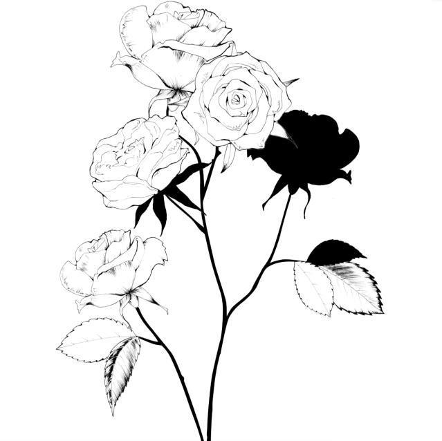 rosegipsy2_mariedebréchapuis